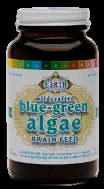 Blue Green Algae Brain Feed - 4oz jar