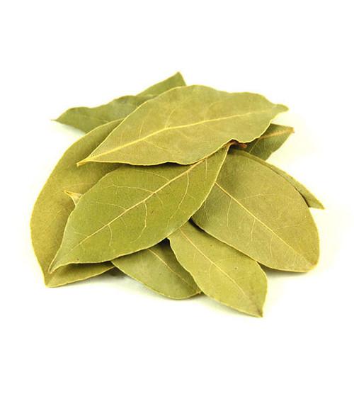Bay Leaves Laurel (Laurus nobilis)
