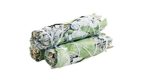 Sage &  EUCALYPTUS Smudge Stick