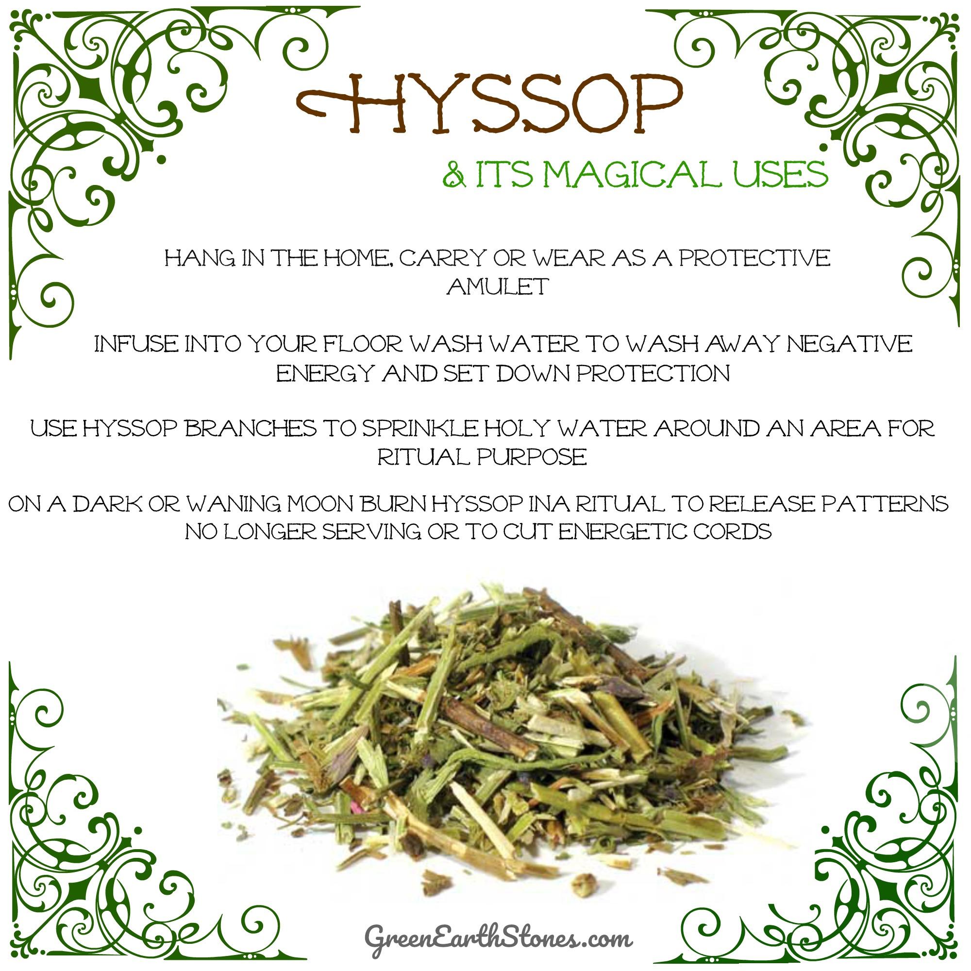 hyssop-herb-flyer.jpg