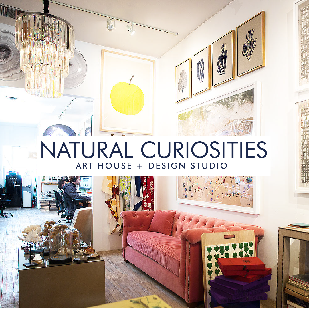 Shop Natural Curiosities