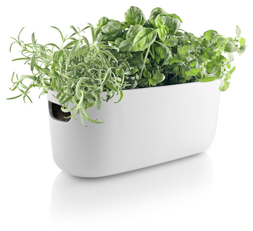 Eva Solo Self-Watering Herb Organizer - White