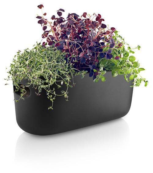 Eva Solo Self-Watering Herb Organizer - Black