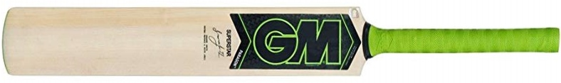 gm-paragon-superstar-cricket-bat.jpg