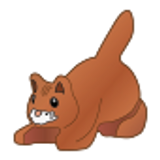 Light Brown/Ginger Cat