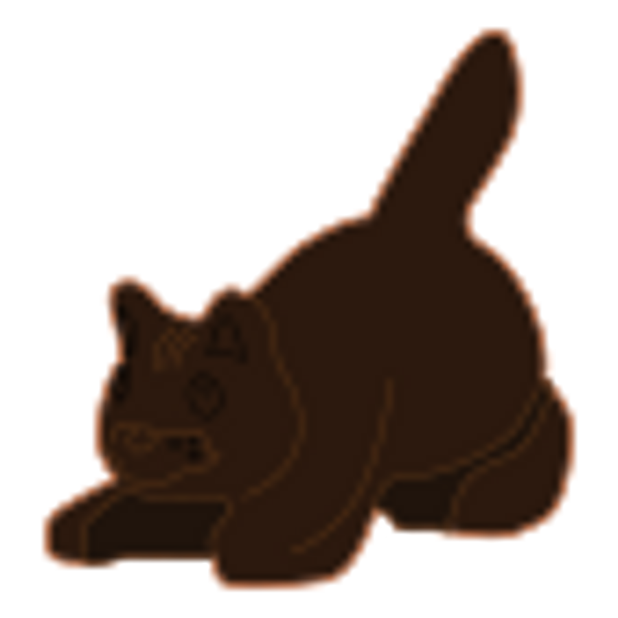 Dark Brown Cat