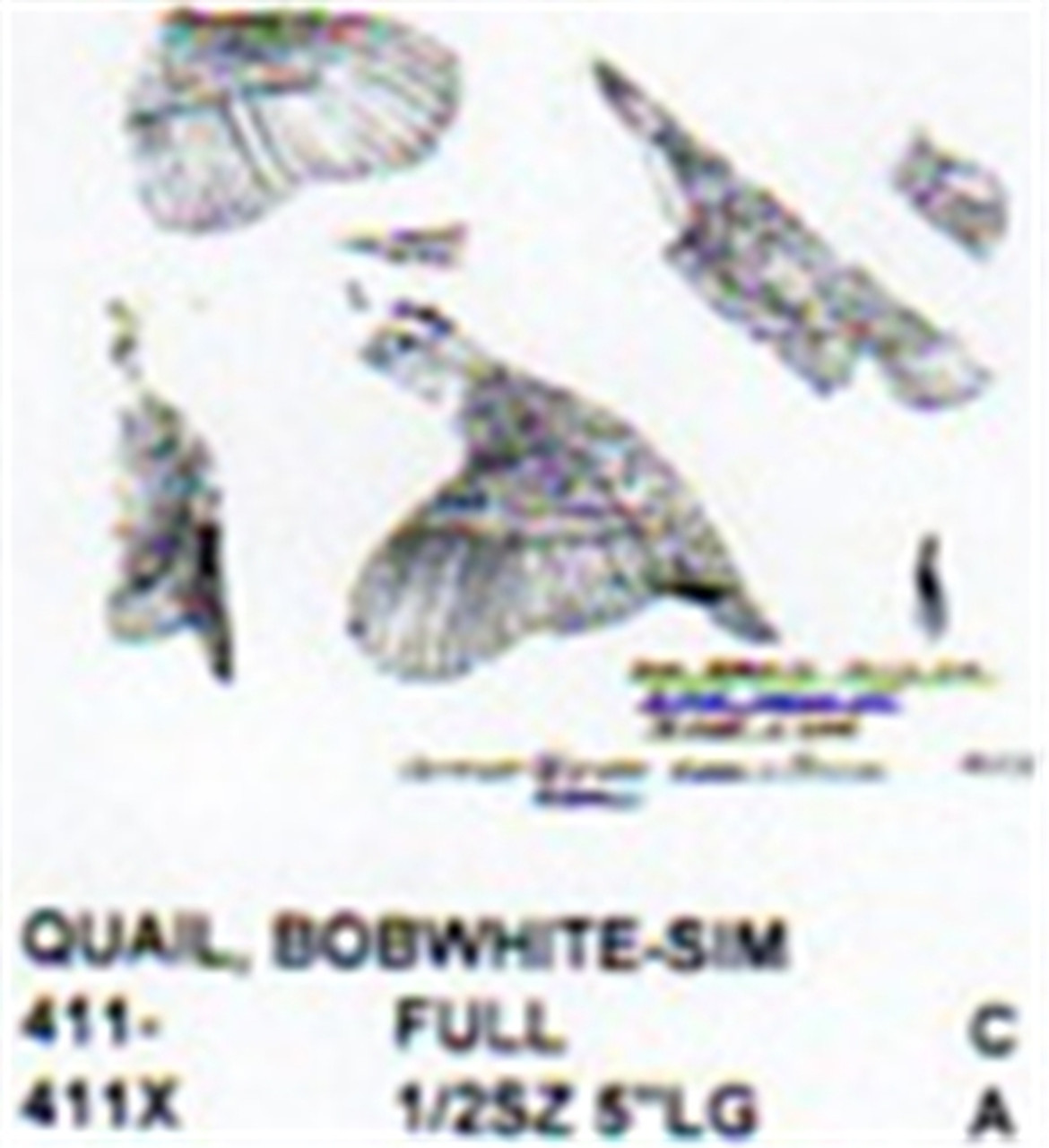 Bobwhite Quail Flying Carving Pattern showing the male in a flying position.