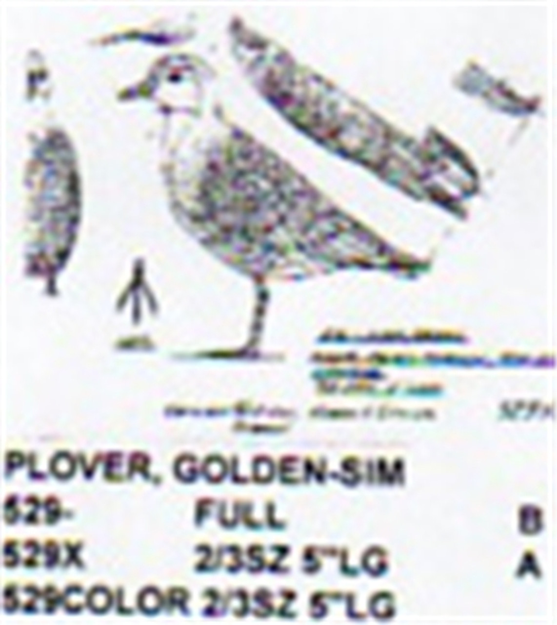 American Golden Plover Standing Carving Pattern showing the Plover in a standing position.