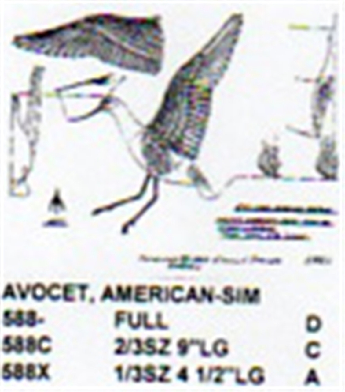 American Avocet Landing Carving Pattern showing the shorebird in a flying/landing position.