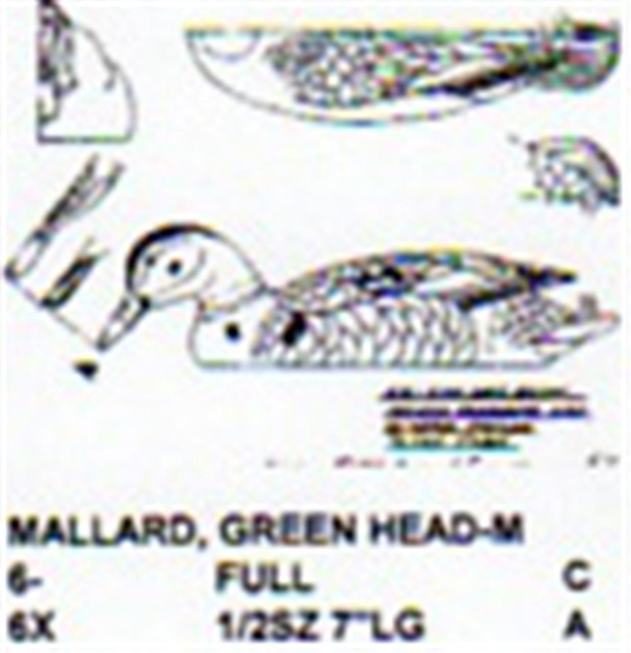Green Head Mallard Male Resting On Water/Feeding showing the full size plan.