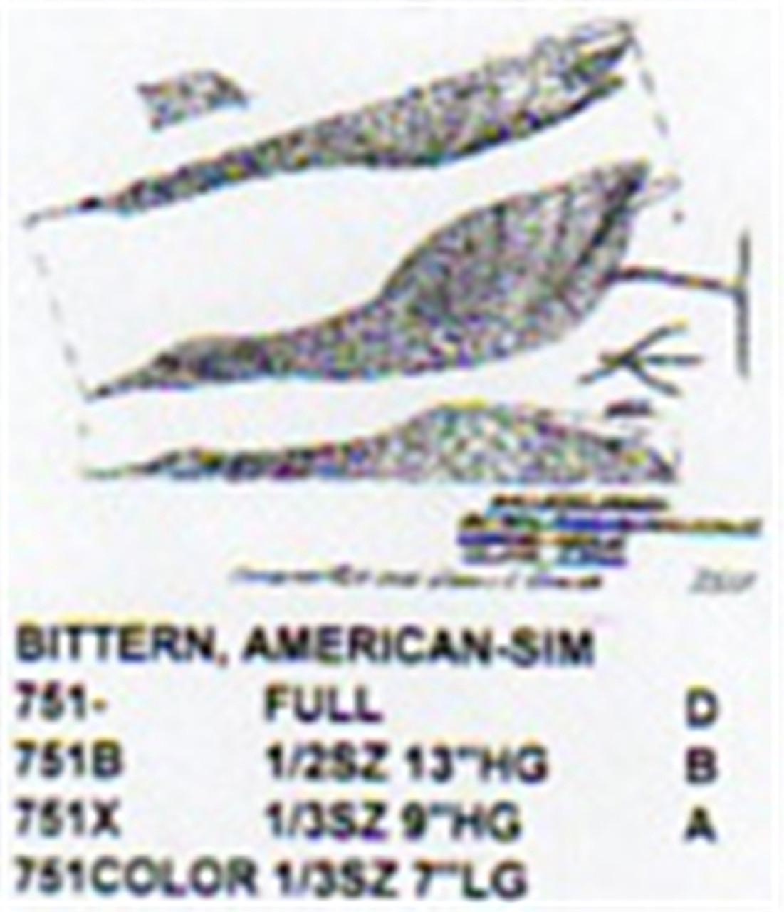 American Bittern Standing-Head Up 1/3 Size