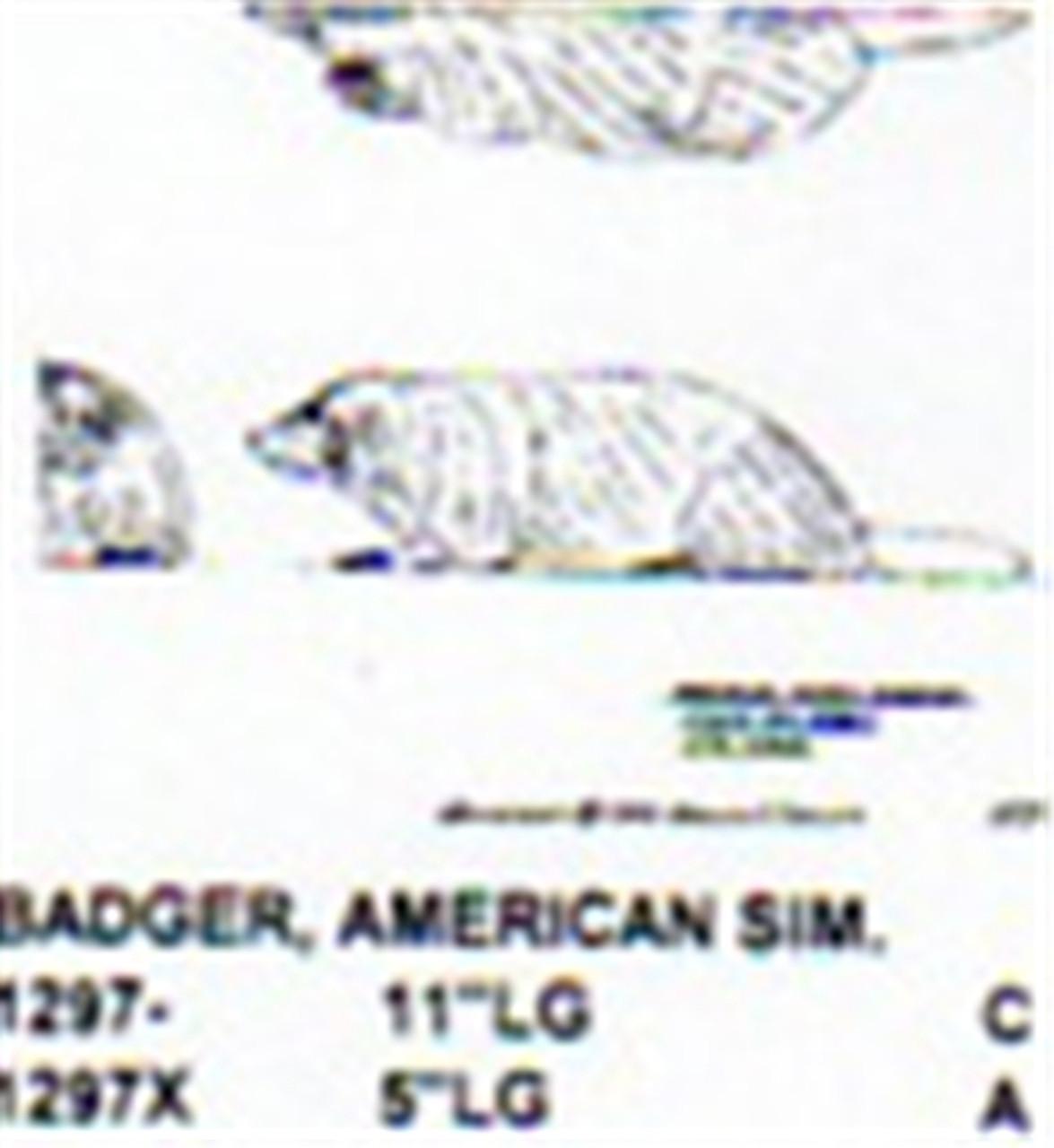 "American Badger Lying Down 5 1/2"" Long"