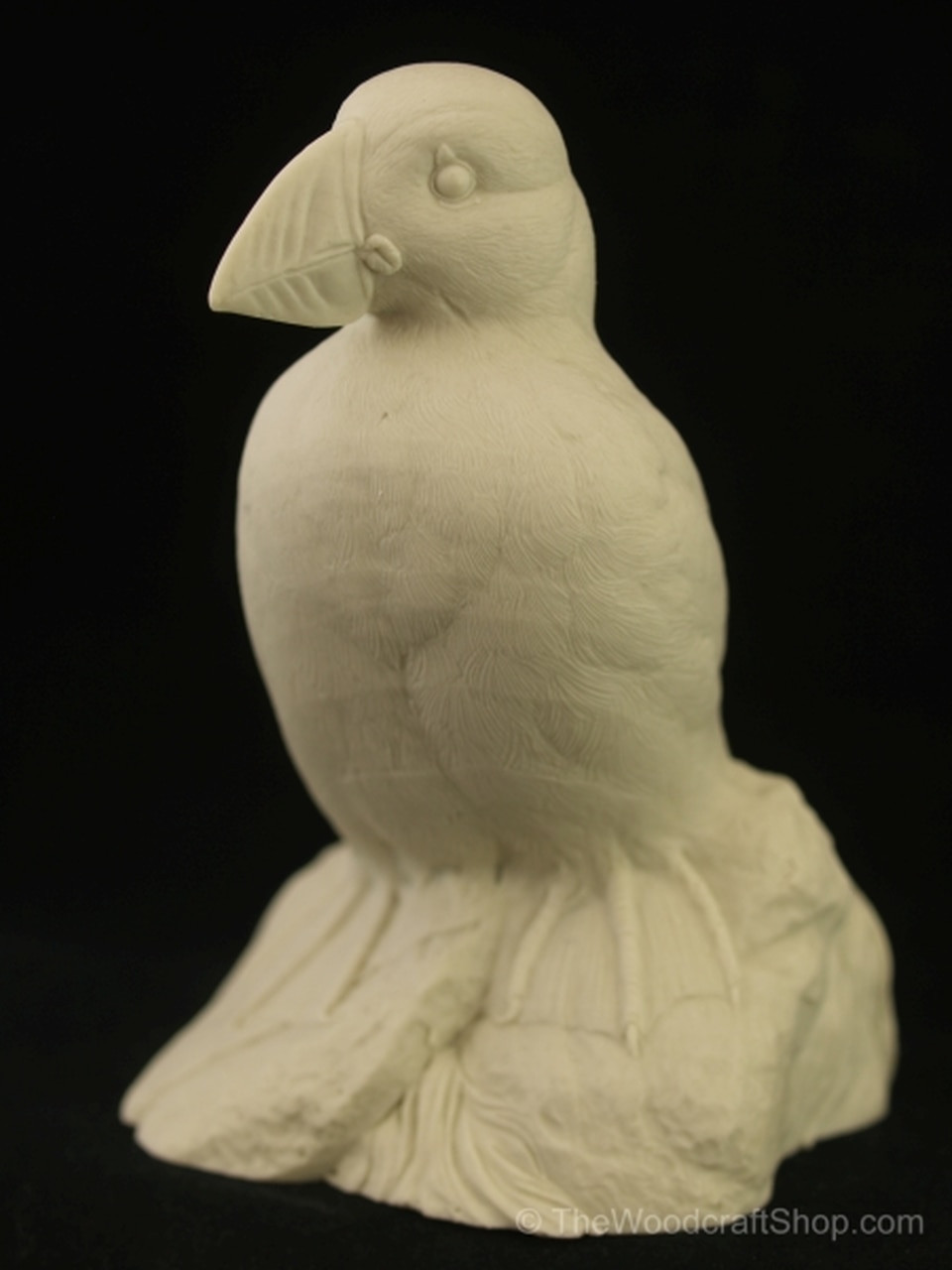 Puffin Guge Study cast slightly facing the left with frontal view.