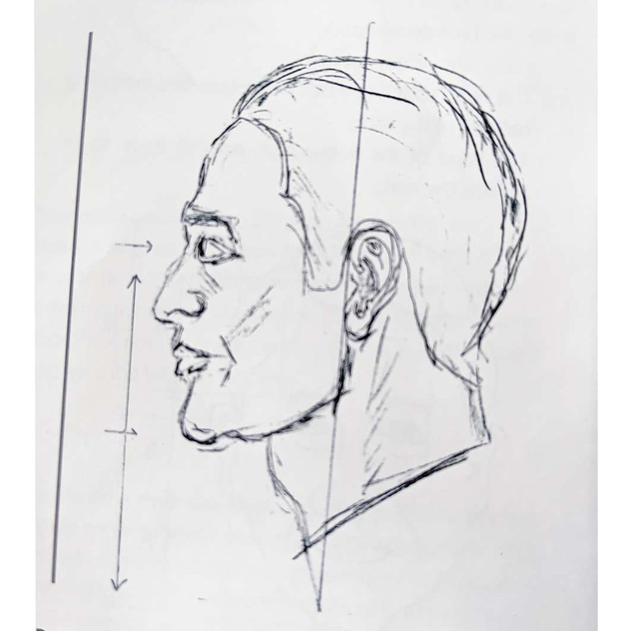 A layout of a face referred to in the book by Vic Hood.