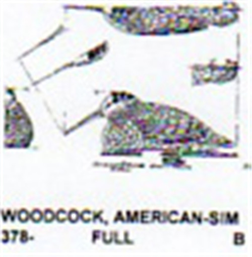American Woodcock Setting Carving Pattern showing the American Woodcock game bird in a setting position.