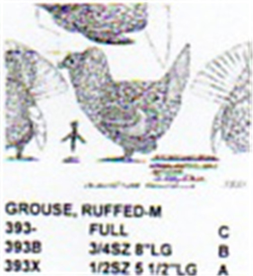 Ruffed Grouse Male Displaying Carving Pattern showing the three Stiller pattern sizes for the male Ruffed Grouse.