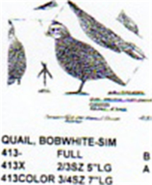 The Bobwhite quail Standing Carving Pattern showing a the actual pattern that will be sent to you.