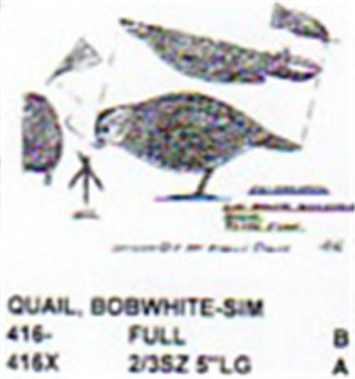 Bobwhite Quail Feeding Carving Pattern showing a profile of a female Bobwhite Quail in a feeding position.