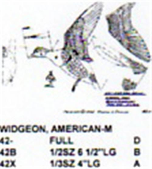 American Widgeon Male Flying/Landing Carving Pattern showing the Stiller Pattern.