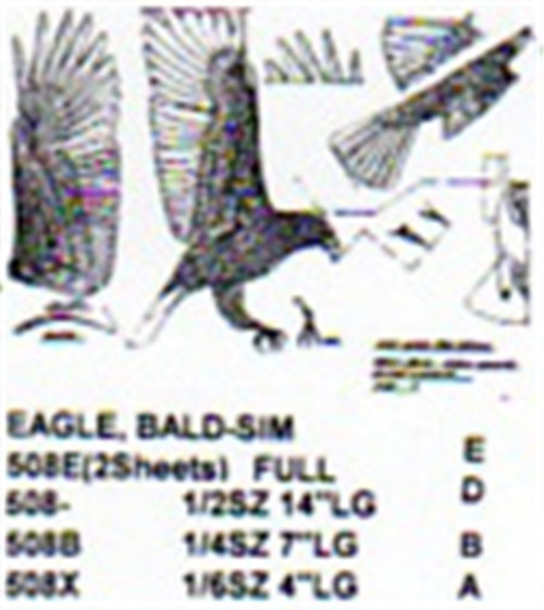 Bald Eagle Flying/Landing Carving Pattern showing the Eagle with wings out getting ready to land.