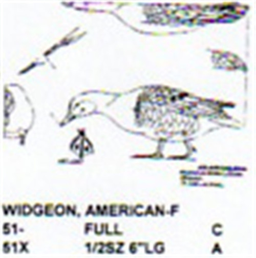 Baldpate Widgeon Female Feeding Carving Pattern showing the Stiller carving pattern.