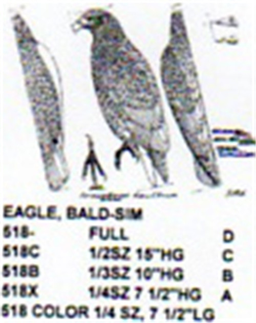 Bald Eagle Standing Carving Pattern showing the Bald Eagle in a standing position.
