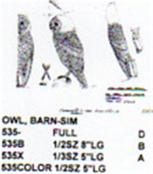 Barn Owl Standing Carving Pattern showing the Owl in a standing position.