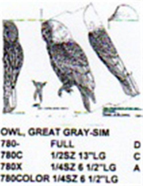 Great Gray Owl Perching Carving Pattern showing the Owl with it's head forward in a perching position.