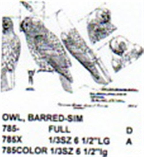 Barred Owl Perching Carving Pattern showing the Barred Owl from front, side, and top profiles.
