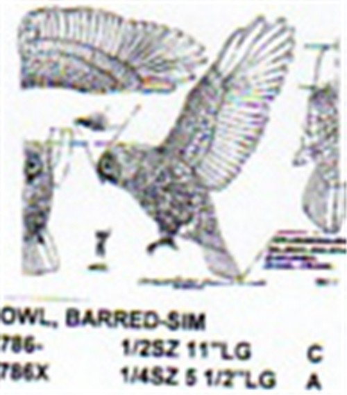 Barred Owl Flying/Landing Carving Pattern showing the Owl with it's wings out getting ready to land.