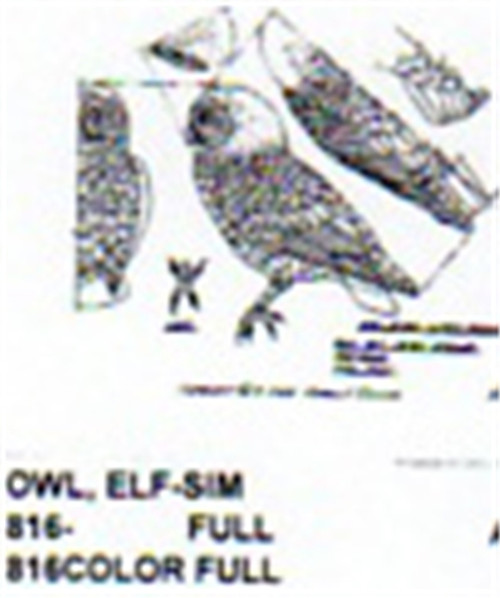 Elf Owl Perching Carving Pattern shows the Owl in perching position with front and side profiles.