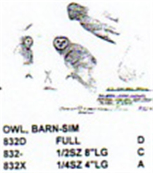 Barn Owl Open Wings Head Turned Carving Pattern showing the Owl with it's wings open,head turned, with a perching posture.