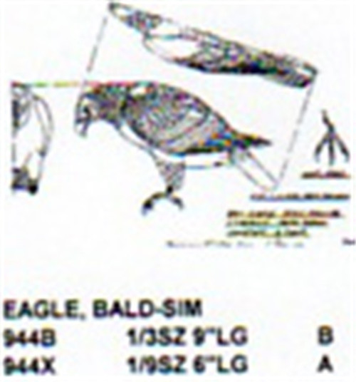 Bald Eagle Standing Head Down Carving Pattern showing the Eagle in a standing position with it's head down.