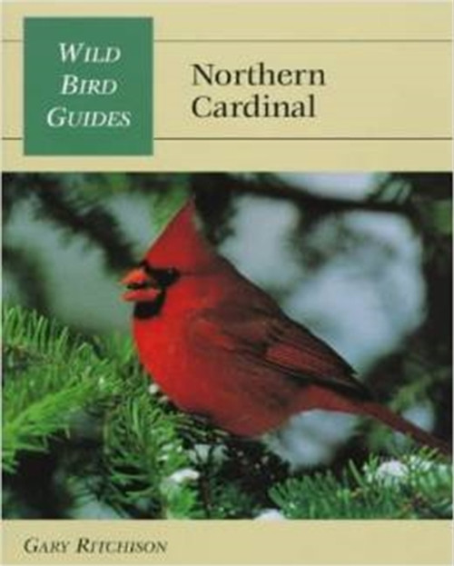 Cover of Wild Bird Guide: Northern Cardinal.