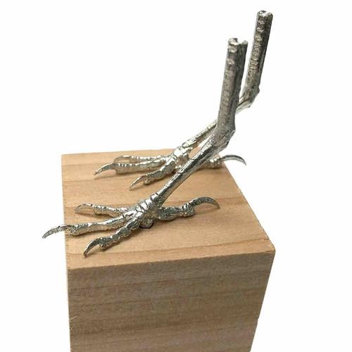 Cedar Waxwing Cast Feet