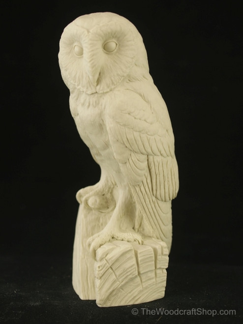 Barn Owl Study Cast showing Front detail.