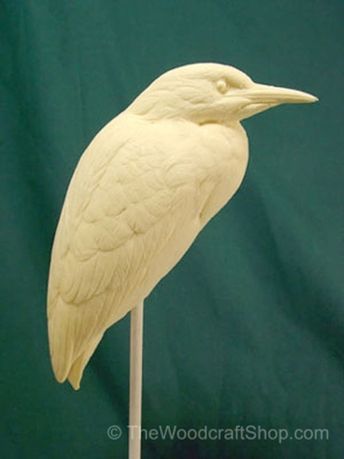 Side View of the Black Crowned Night Heron Study Cast.