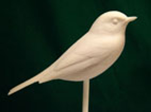 Warbler Study Cast featuring a yellow rump warbler.