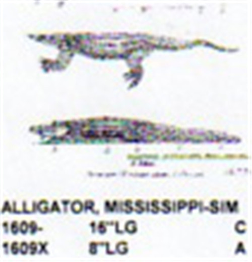 """Carving pattern for an alligator that is 16"""" long."""
