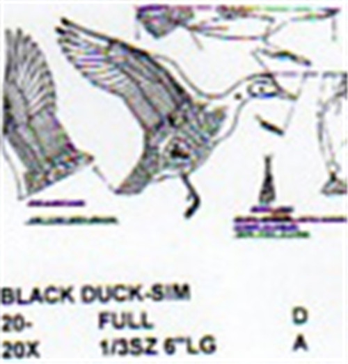 Black Duck Flying Carving Pattern showing the details of the carving pattern to include the side, front, top and detailed view of the wings.