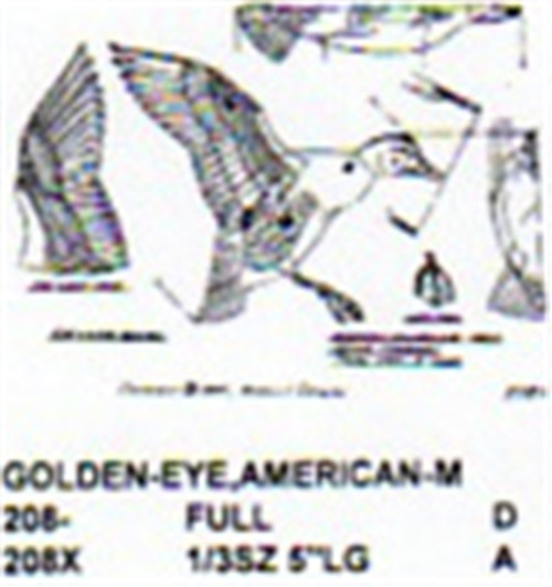 American Golden Eye Male Flying/Landing Carving Pattern showing the two different Stiller pattern sizes.