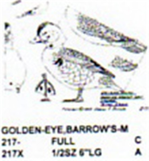 Barrows Golden Eye Standing