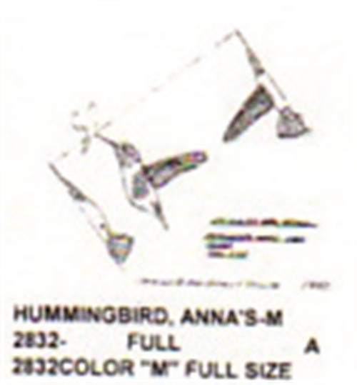 Anna's Hummingbird Carving Pattern showing the Hummingbird with wings out in a flying position.