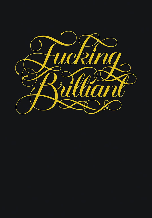 """cover of a journal in black with script gold font with the words """"fucking brilliant"""""""