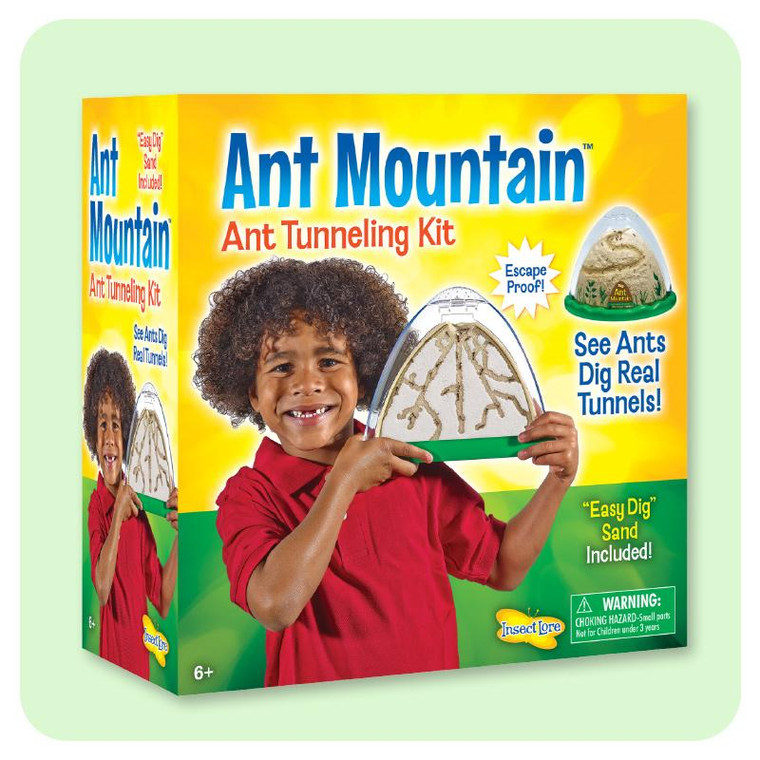 This image shows yellow background with a young boy holding up the see- through ant  mountain .