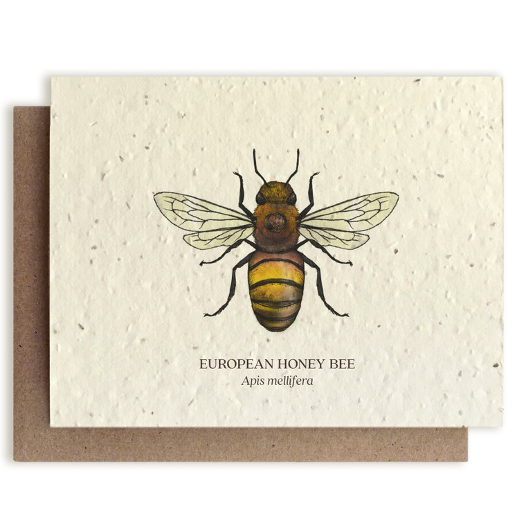 These greeting cards feature our original pen and watercolor drawings. This card is plantable made of post-consumer seed paper. Each card comes with a kraft envelope. The inside is left blank for you to write whatever suits the occasion.