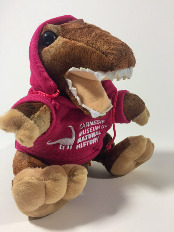 """A 7"""" T-Rex plush with neon pink hoodie embroidered with the Carnegie Museum of Natural History logo in white."""