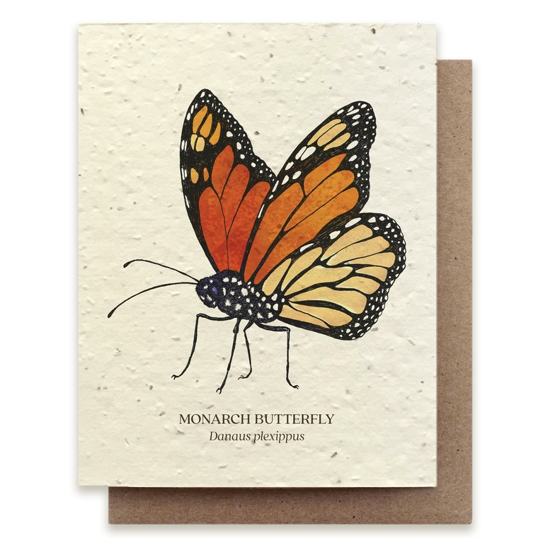 Plantable natural card with painted Monarch butterfly, blank inside with kraft envelope.