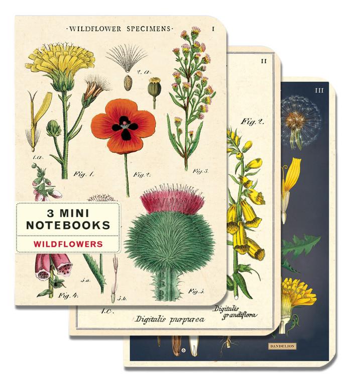 Wildflower mini notebooks 3 pack