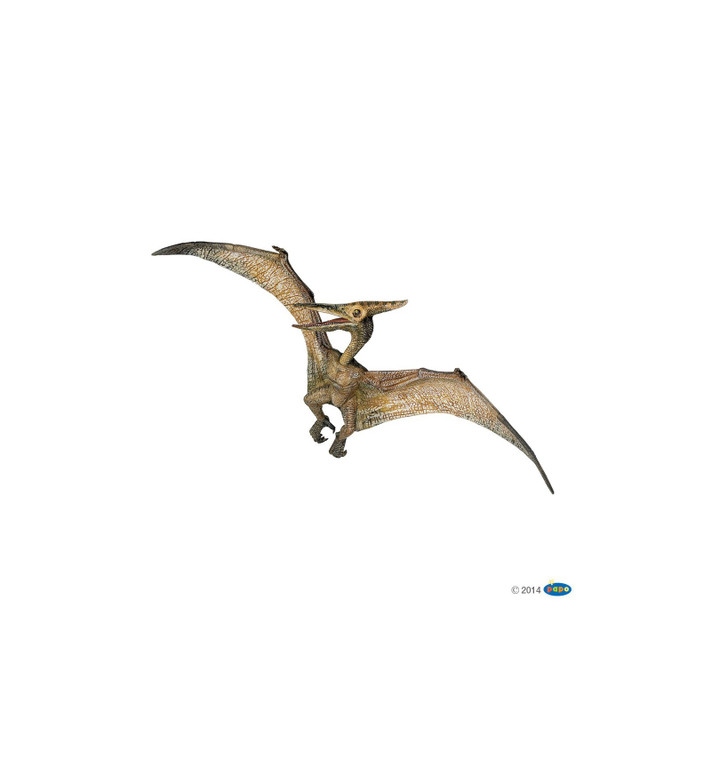 Prehistoric bird with a long beak and large wings